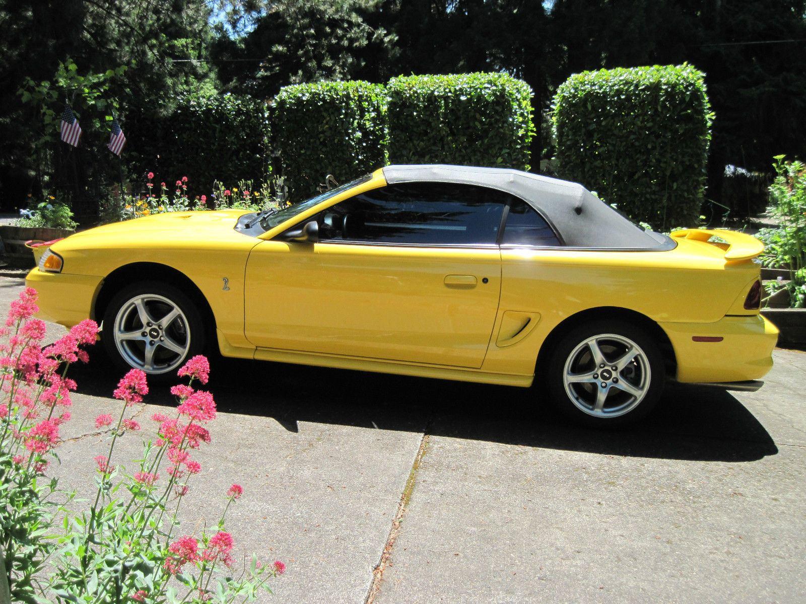 1998 ford mustang cobra svt convertible for sale. Black Bedroom Furniture Sets. Home Design Ideas