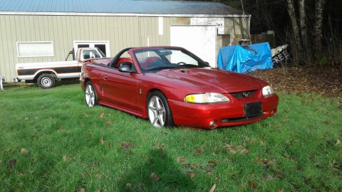 1996 Ford Mustang SVT Cobra Convertible for sale