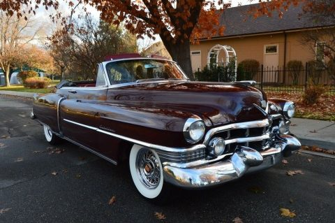 pampered survivor 1951 Cadillac Series 62 Convertible for sale