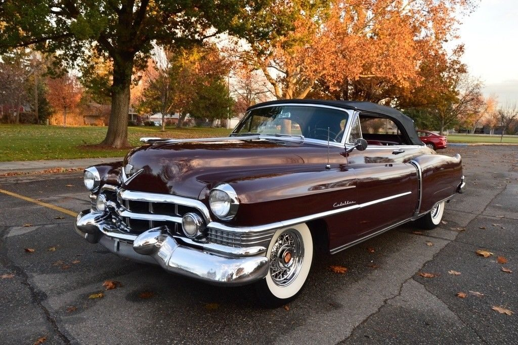 pampered survivor 1951 Cadillac Series 62 Convertible