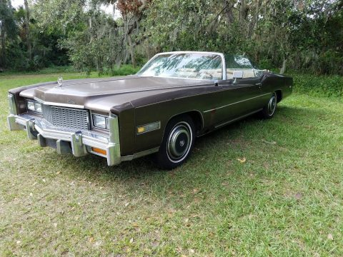 needs some work 1976 Cadillac Eldorado convertible for sale