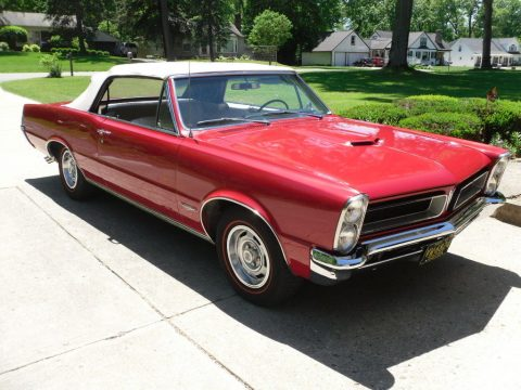 clean 1965 Pontiac GTO convertible for sale