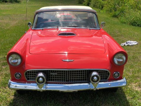 aftermarket AC 1956 Ford Thunderbird convertible for sale