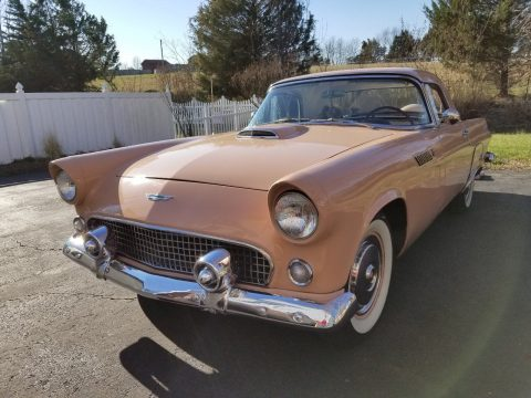 rare color 1956 Ford Thunderbird converible for sale